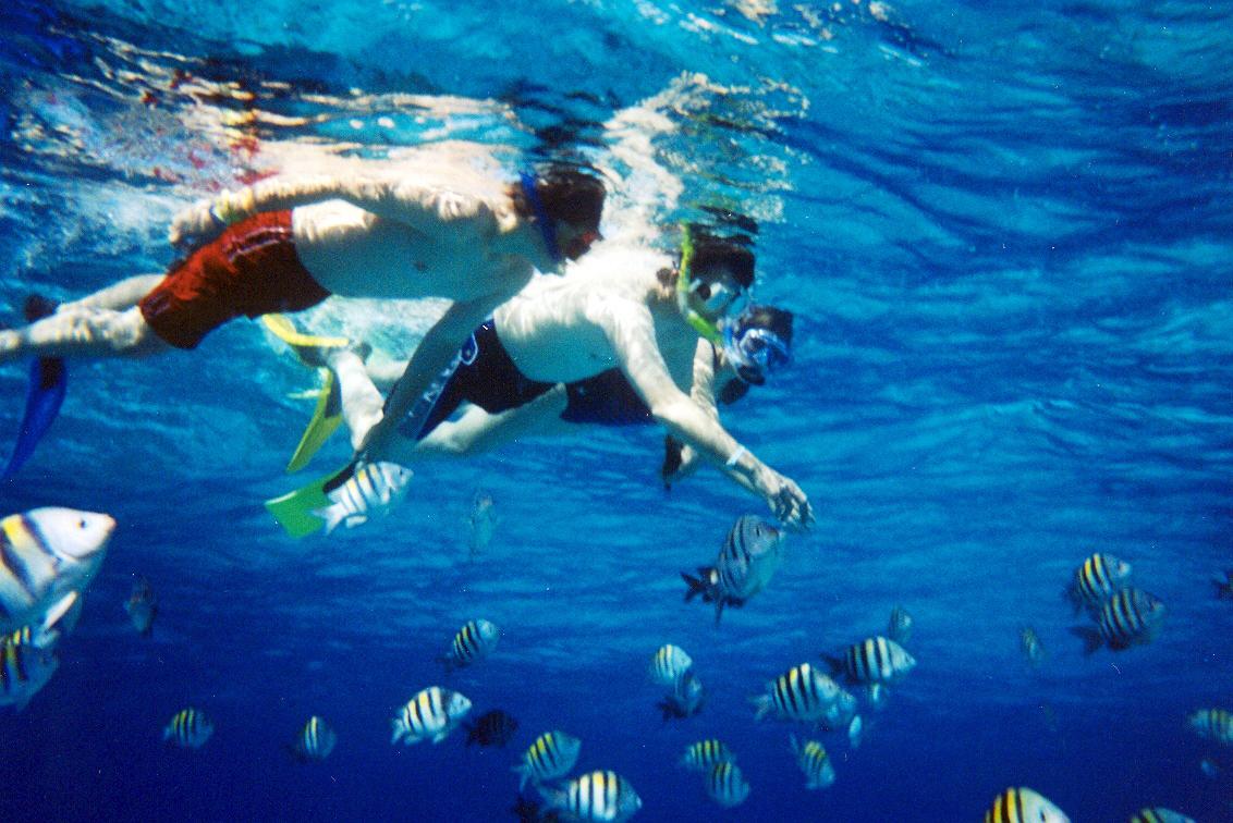 snorkel bonaire